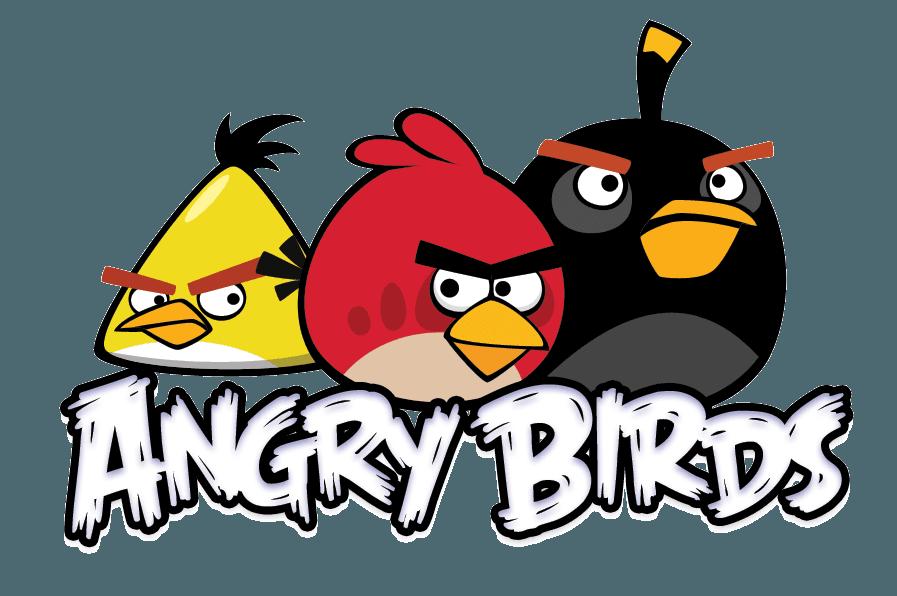 Camiseta Angry Birds 04 Infantil