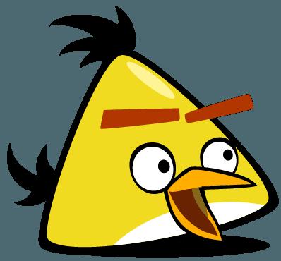 Camiseta Angry Birds 05 Infantil