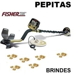 Detector de Metais Fisher Gold Bug Pro Plus