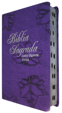 Bíblia letra gigante com harpa - capa lu...