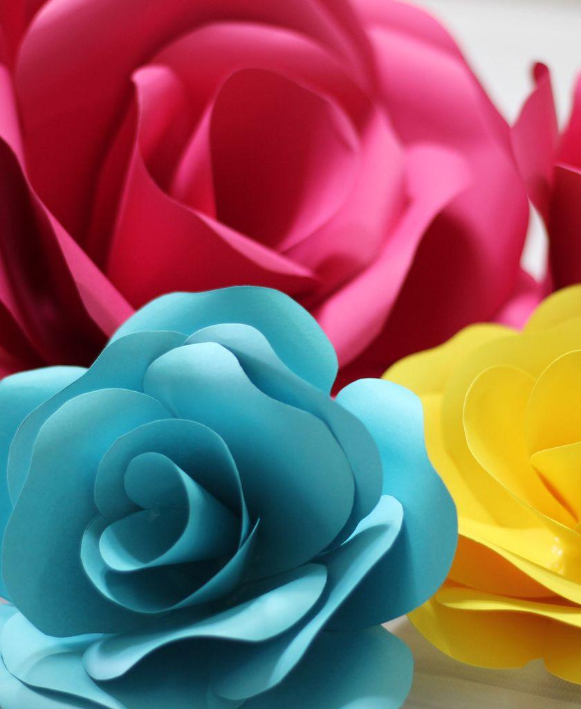 Molde para rosa de papel 15cm 20cm 25cm for Rosas de papel