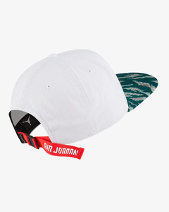 Jordan Pro City of Flight 2.0 Cap Strapback - comprar online