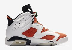 "AIR JORDAN RETRO 6 ""GATORADE"" en internet"