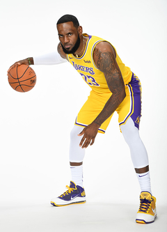 "Nike LeBron 7 ""Media Day"" Lakers Color"