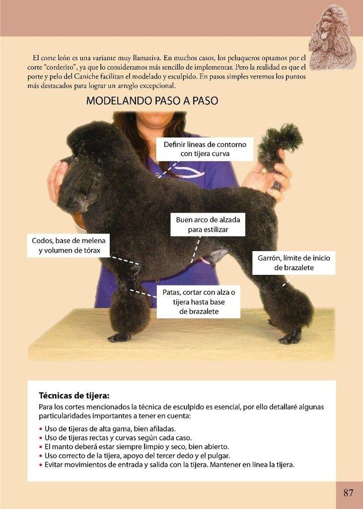 libro el arte de la peluqueria canina - daniela scolaro