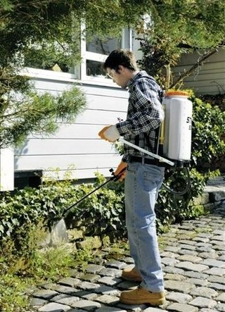 Pulverizador manual STIHL SG71 en internet