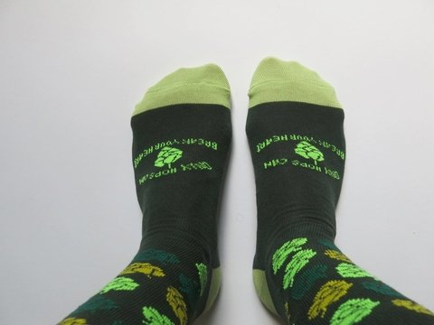 OHCBYH - Sox #1 - Only Hops Can break your heart
