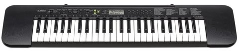 Casio Ctk245 - Portatil 49 Teclas
