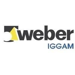 Pegamento para ceramicas Weber 30 kg
