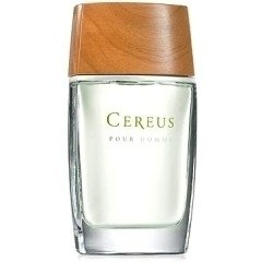 Cereus No.05 / No. 06 de Cereus Masculino - Decant