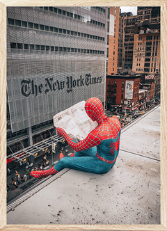(1011) SPIDERMAN