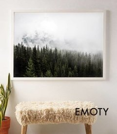 (306) CLOUDY FOREST - EMOTY