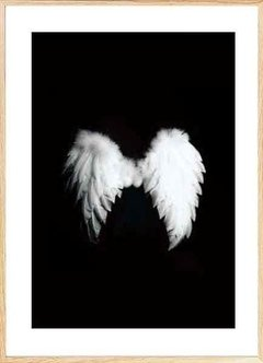 (309) Angel Wings - comprar online