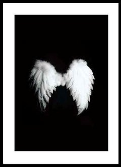 (309) Angel Wings en internet