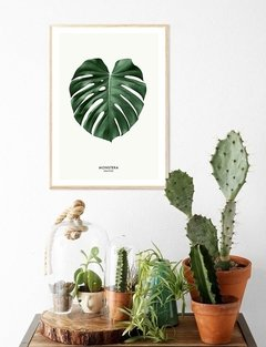 (132) MONSTERA DIBUJO - EMOTY Wall Deco