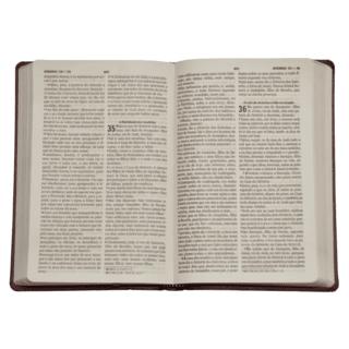 Biblia Sagrada Com Salmos E Hinos Grande Mebp