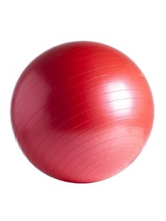 Gym Ball (DIAM: 55 65 75 y 85 cm) - MM Fitness en internet