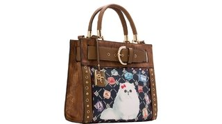 BOLSA RAFITTHY CAT PASSPORT REF.: 31.72126 -  TOFFEE - comprar online