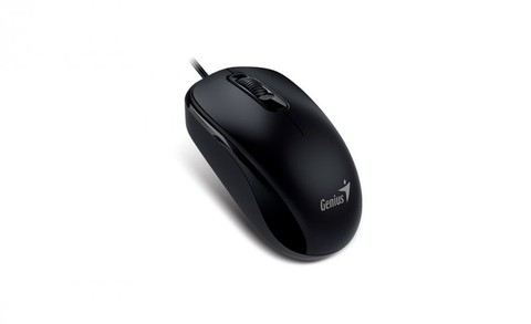 Mouse Genius DX-110 en internet