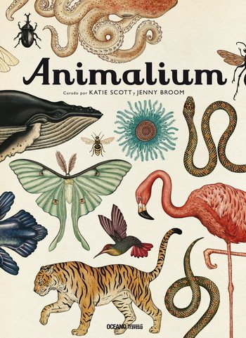 ANIMALIUM - Katie Scott y Jenny Broom - OCEANO TRAVESIA
