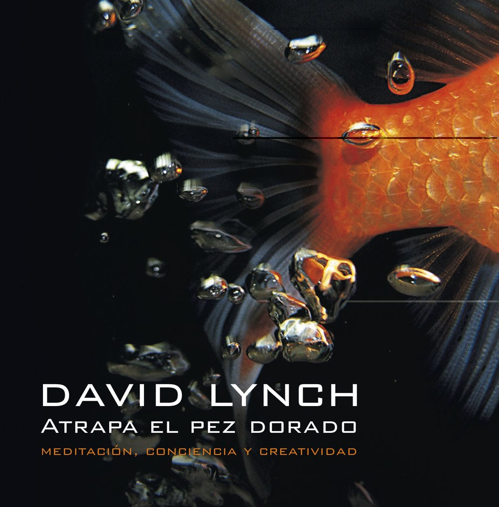 ATRAPA EL PEZ DORADO - DAVID LYNCH - EDITORIAL SUDAMERICANA