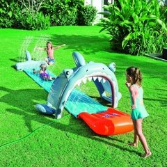 SHARK ATTACK SLIDE
