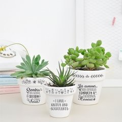 Maceta I love cactus and Succulents N°2 - comprar online
