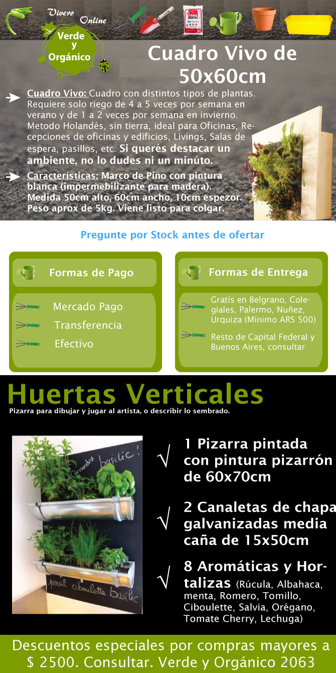 Cuadro vivo de 50x60cm con plantas reales ideal para recepciones de oficinas, salas de reuniones, oficinas, recepciones de edificio, livings, etc.