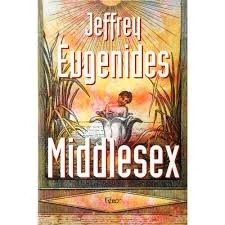 Eugenides, Jeffrey|Reis, Paulo	Middlesex	9788532515407	Rocco	2003
