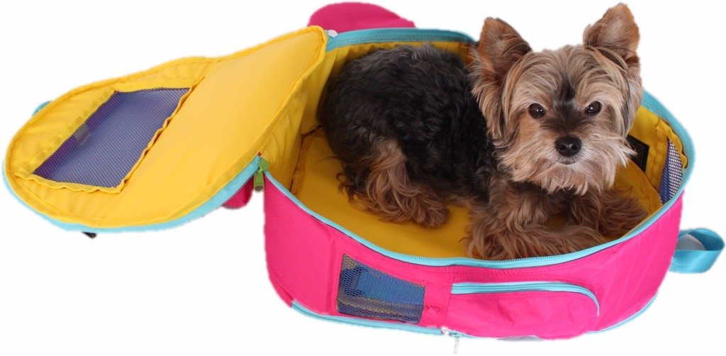 3 In 1 Backpack For Dogs Fuchsia Pet Carrier Pet Diaper Bag Pet Bed