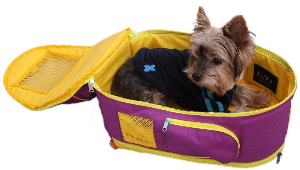 3 In 1 Backpack For Dogs Violet Pet Carrier Pet Diaper Bag Pet