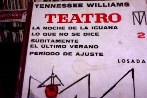 Teatro - Tennessee Williams