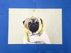Tapete 60x40cm - Dog pug banana