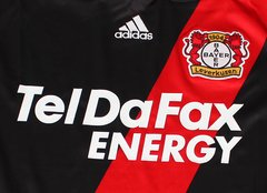 Bayer Leverkusen 2010/2011 - Home na internet