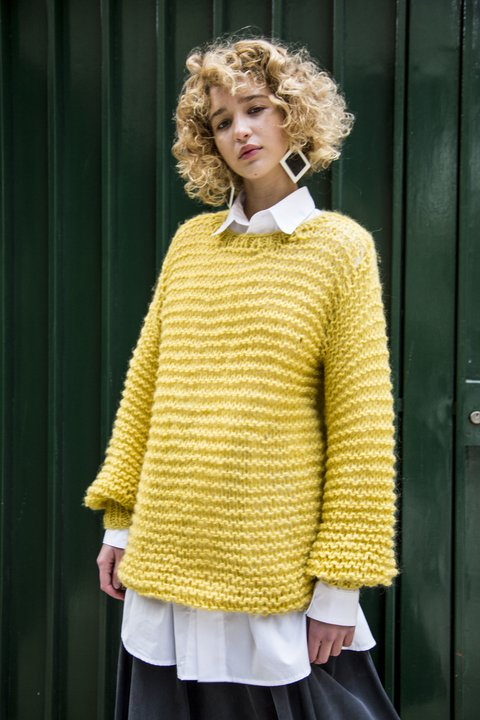Sweater Fauvista en internet