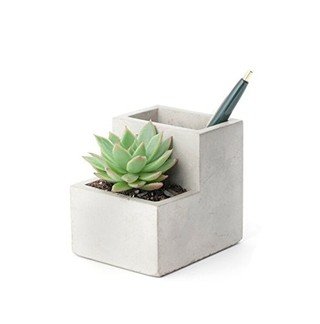 Concrete Desktop Planter - Material