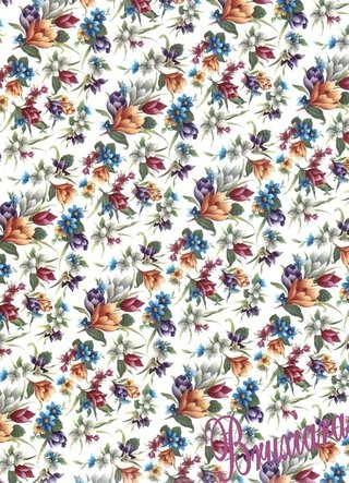 70017(H) Tapete Floral