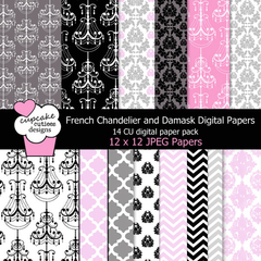CC - French Chandelier Damask