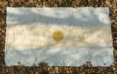 Argentine hand painted Flag on internet