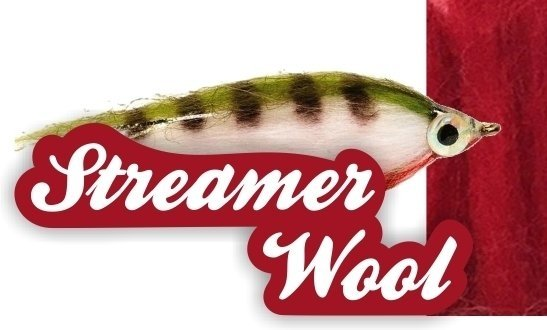 Streamer Wool en internet