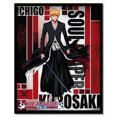 placa decorativa anime bleach