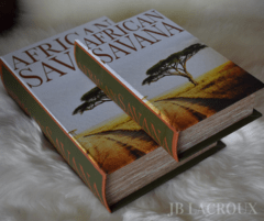 BOOK BOX SET X 2 AFRICAN SAVANA