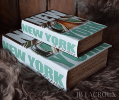 BOOK BOX SET X 2 NEW YORK SUBWAY