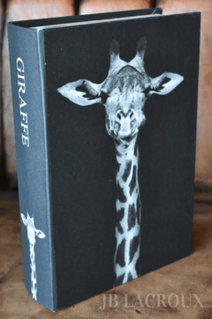 ART JB-BB1 BOOK BOX GIRAFFE