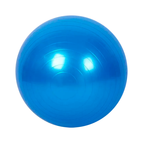 Gym Ball Pelota De Esferodinamia 75cm