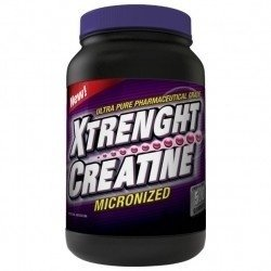 XTRENGHT CREATINA 500 Grs - XTRENGHT NUTRITION