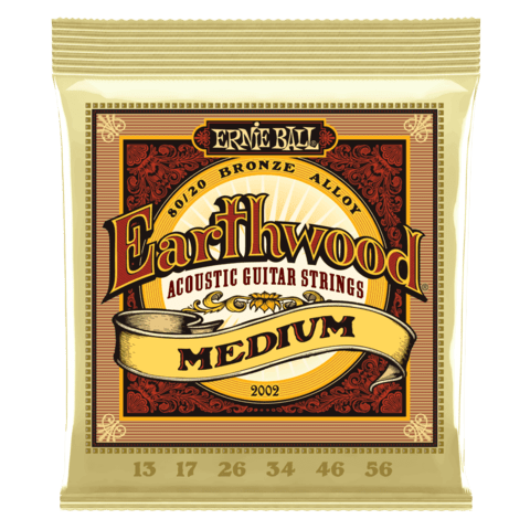 Enc. Ernie Ball Earthwood 2002 013-056