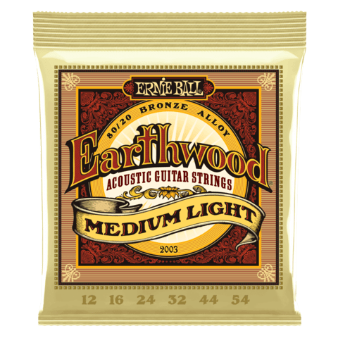 Enc. Ernie Ball Earthwood 2003 012-054