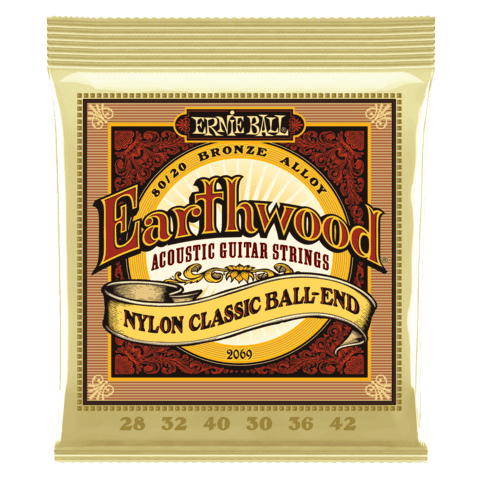 Enc. Ernie Ball Earthwood 2069