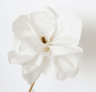 Luxury Paper Flower Magnolia